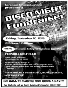 Disco Night Fundraiser 2015